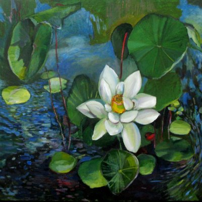 Star in the Pond