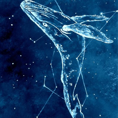 Whale flying in the starry sky