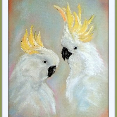 Crested cockatoos