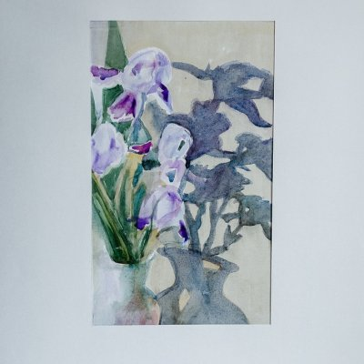 Shadows of irises