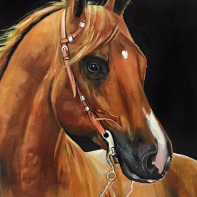 Portrait of a Redhead Horse