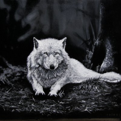 Oil painting white wolf in the forest