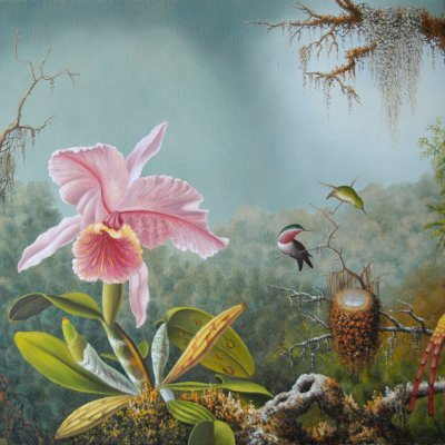 Orchid and hummingbird