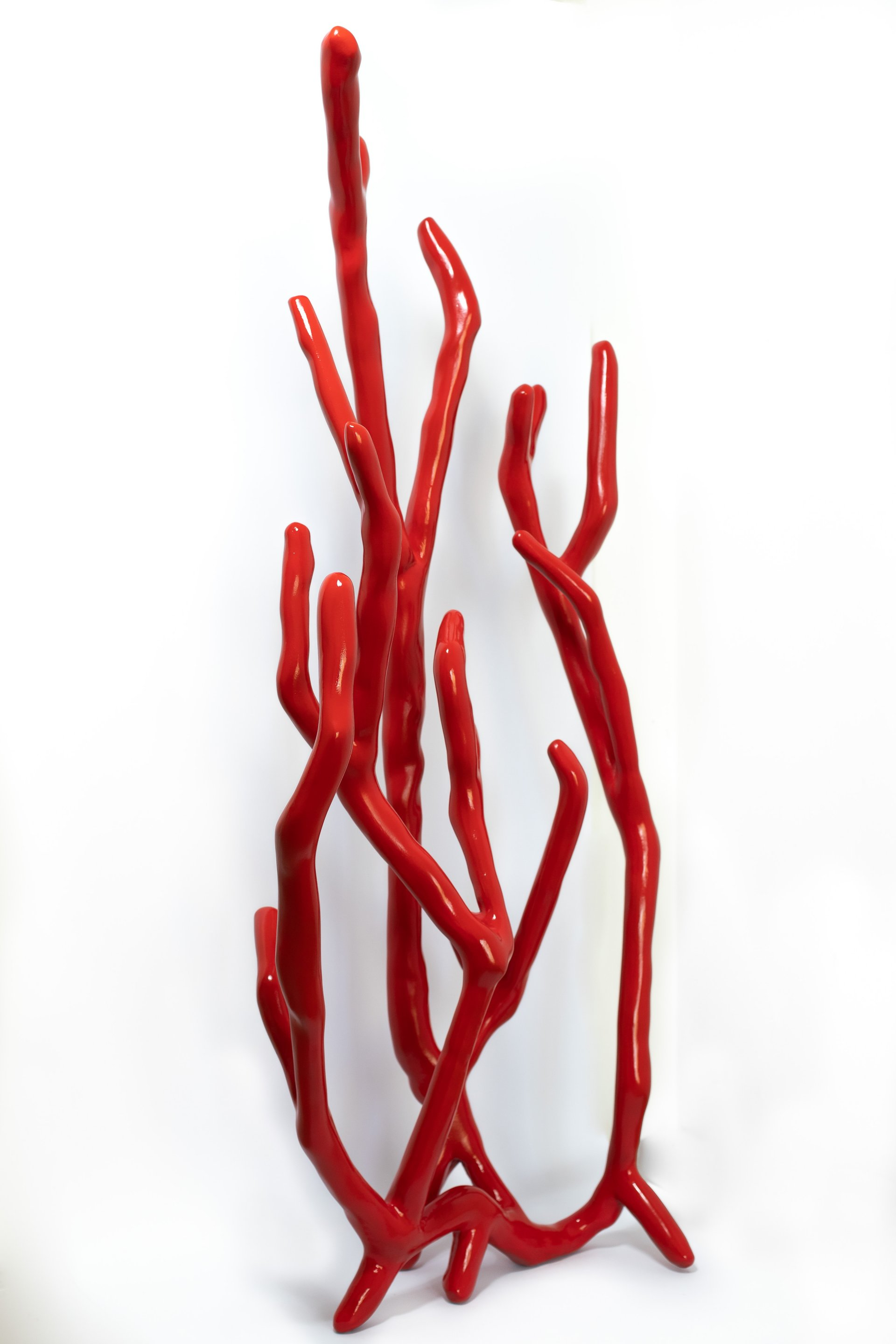 """""""Coral"""". Courtesy of Residence Graphite"""