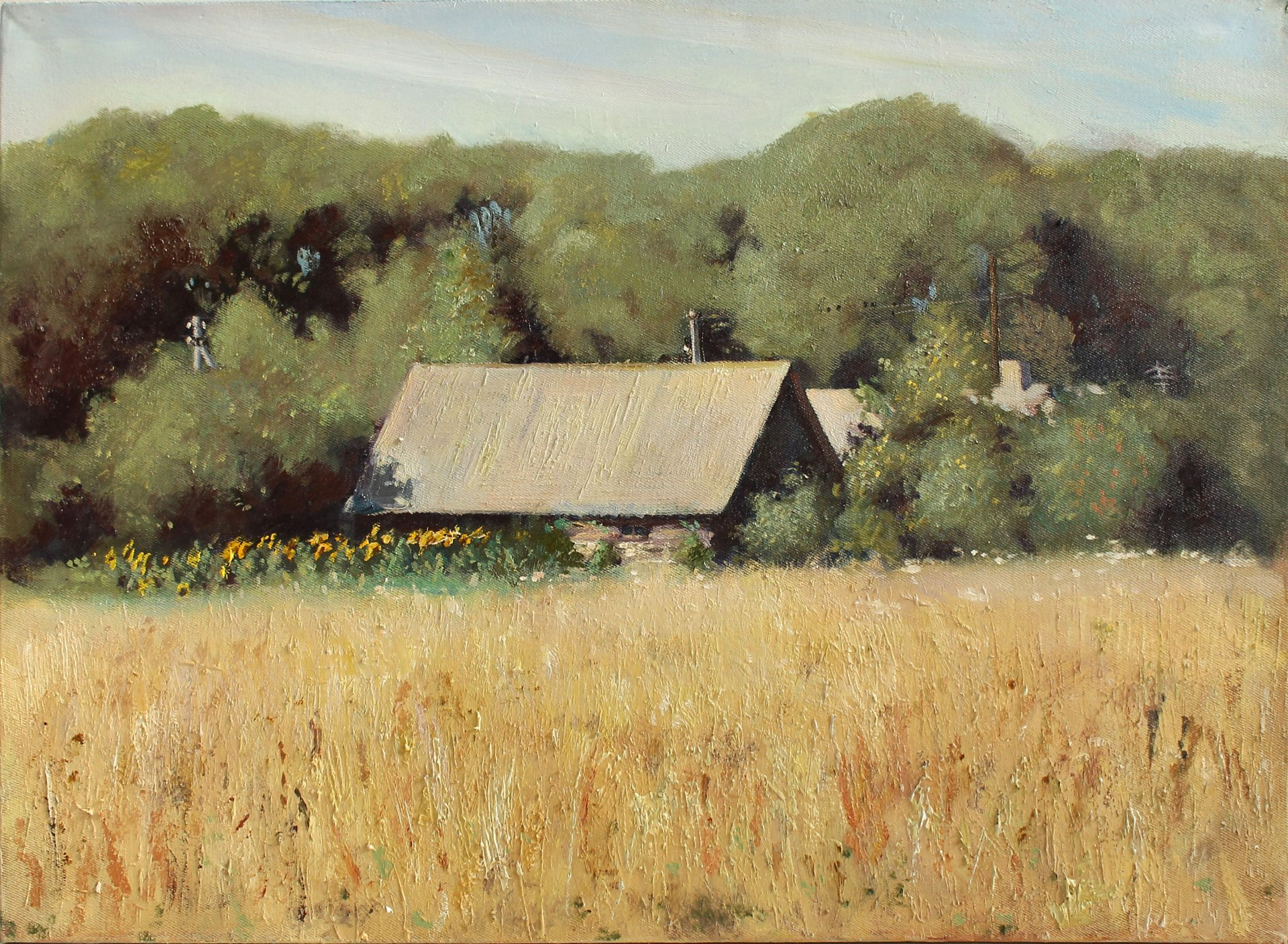 Landscape with sunflowers