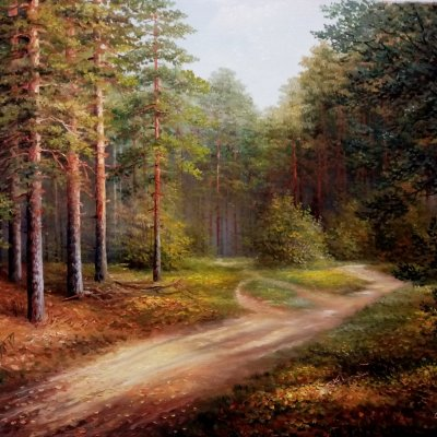 Forest footpaths